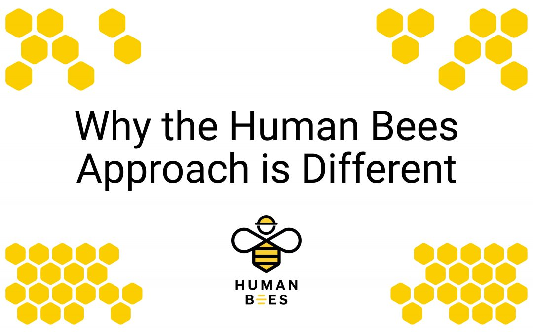 Why the Human Bees Approach is Different